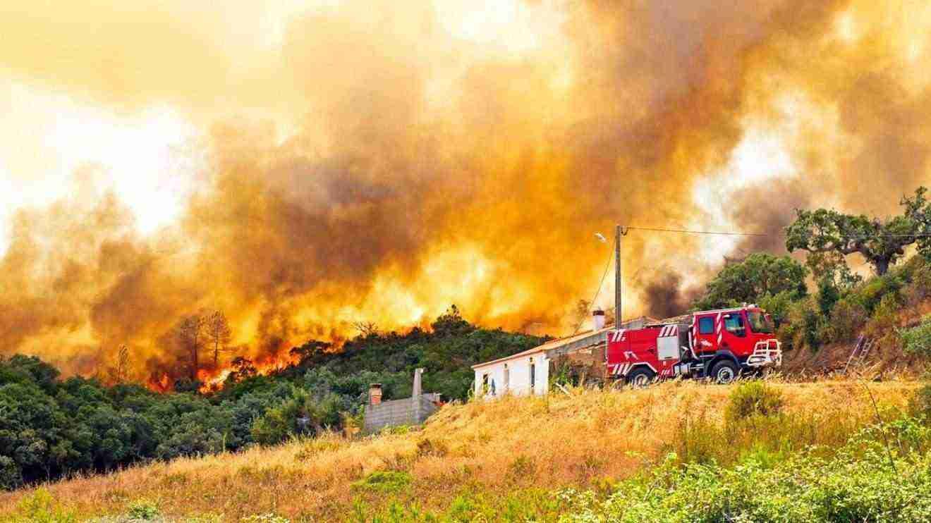Excelente trabajo de los efectivos de extición de incendios