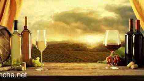 Sector del vino en Castilla-La Mancha