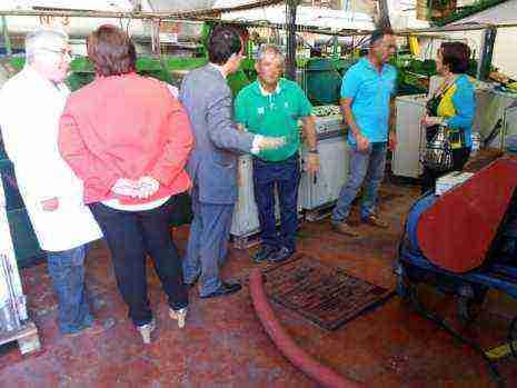 visita-a-cooperativa-vitivinicola-san-jose-en-herencia-1