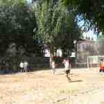 finaliza iv torneo balonmano playa herencia 8 150x150 - Finaliza el IV Torneo de Balonmano Playa en Herencia