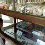 vietnam camboya elias escribano perle por el mundo 23 150x150 - Perlé por el mundo y su vicisitudes varias por Vietnam. Etapas 406 a 409