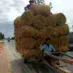 vietnam camboya elias escribano perle por el mundo 2 150x150 - Elías, Perlé por el Mundo, en Camboya y Vietnam
