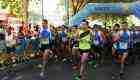 Medio millar de atletas en la Media Maratón