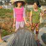 Perlé llegado a Hanoi capital vietnamita31 150x150 - Perlé llegado a Hanoi, capital vietnamita. Etapas 436 a 445
