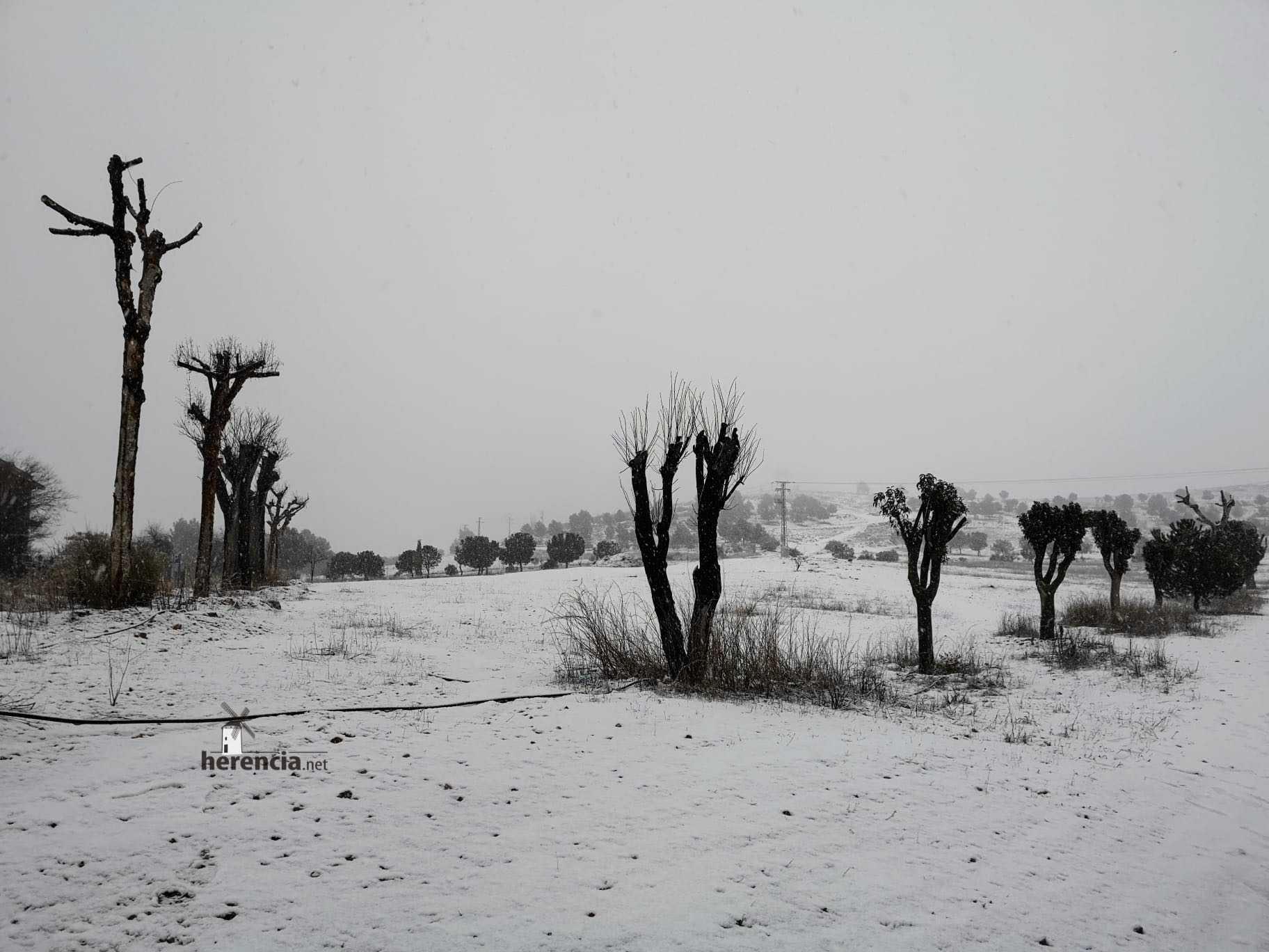 Las nevadas llegan Herencia y a toda Castilla-La Mancha 19