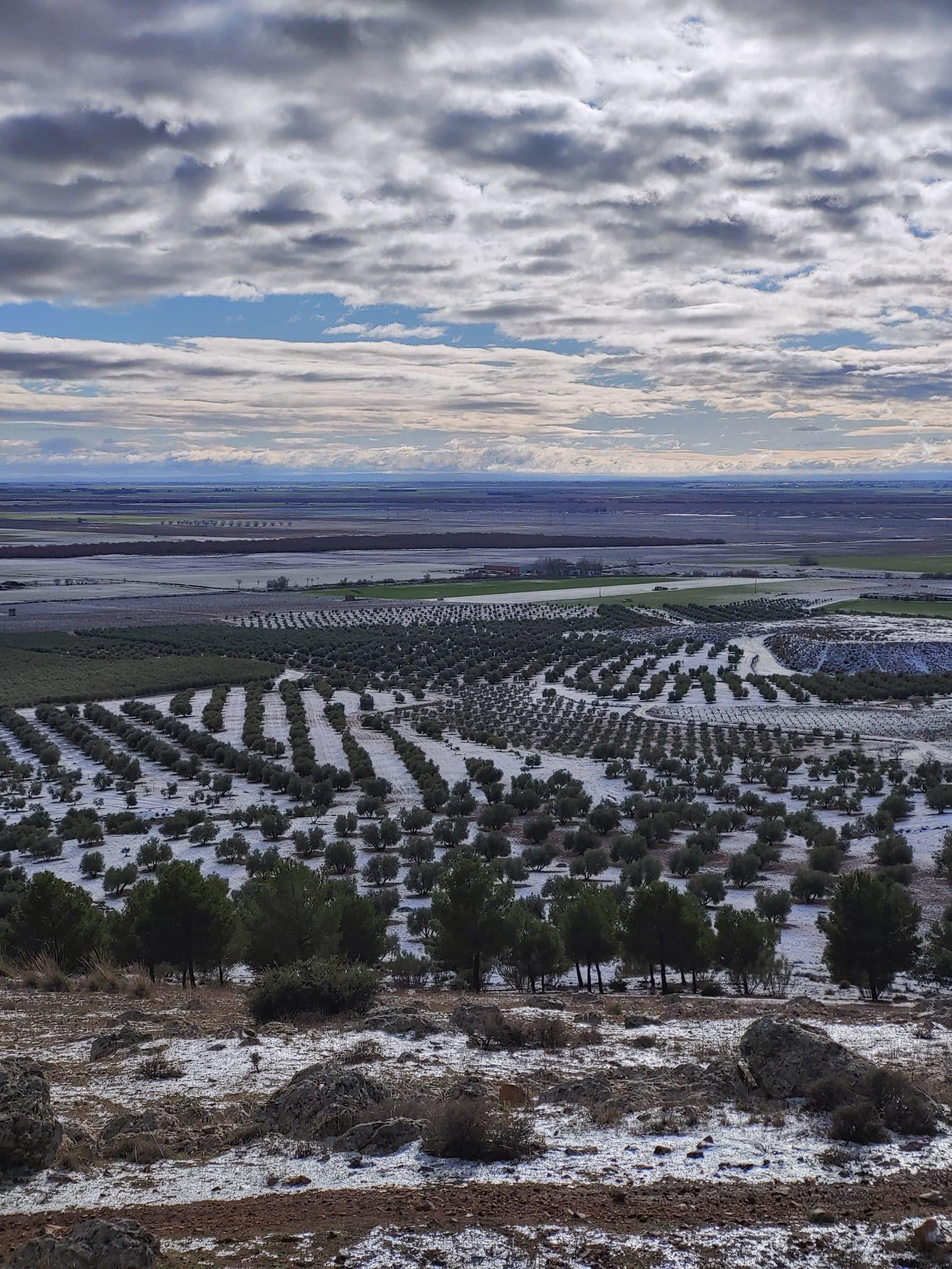 Castilla-La Mancha suspende las clases hasta el próximo lunes ante la previsión de fuertes nevadas 11