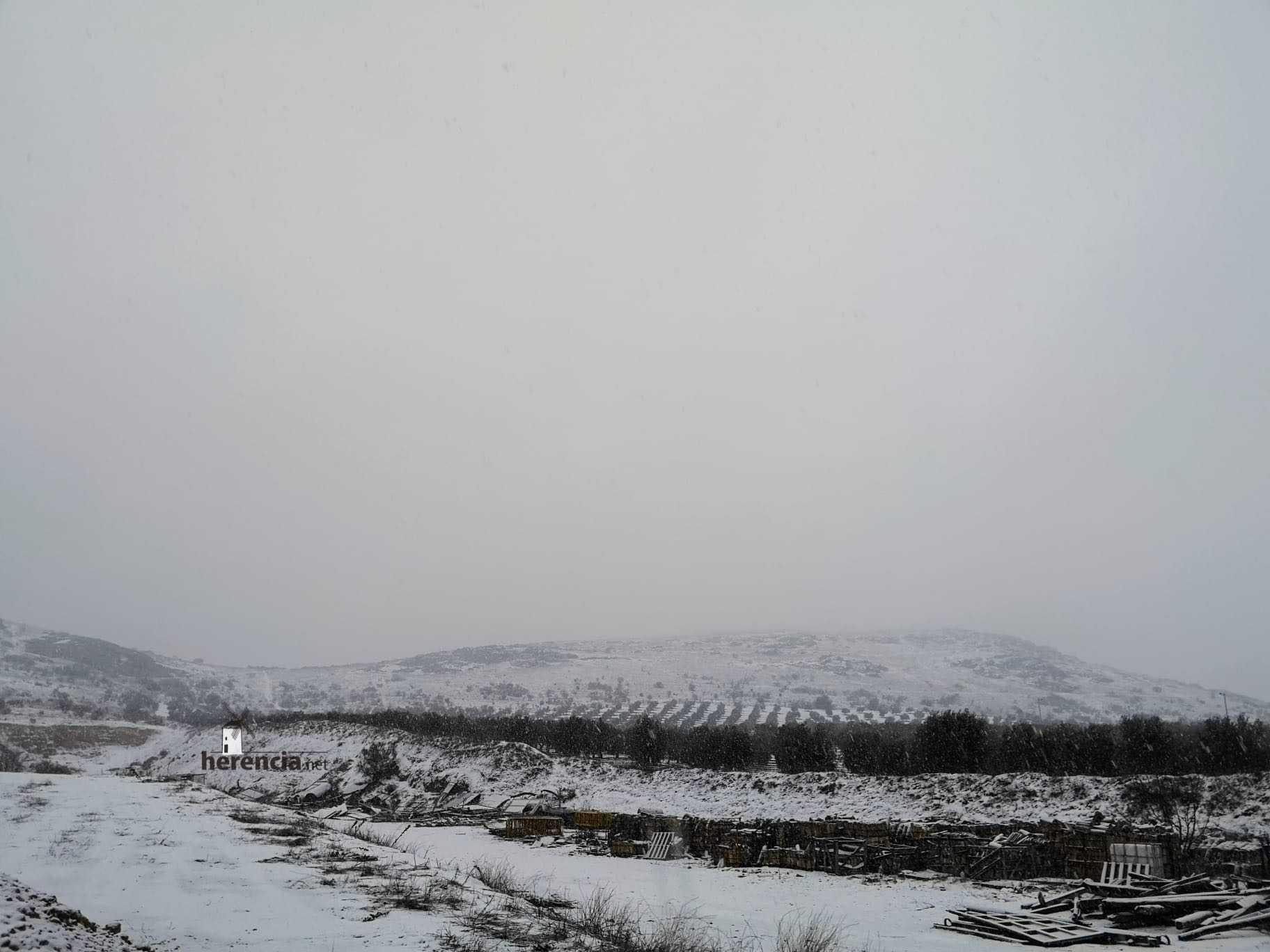 Las nevadas llegan Herencia y a toda Castilla-La Mancha 29