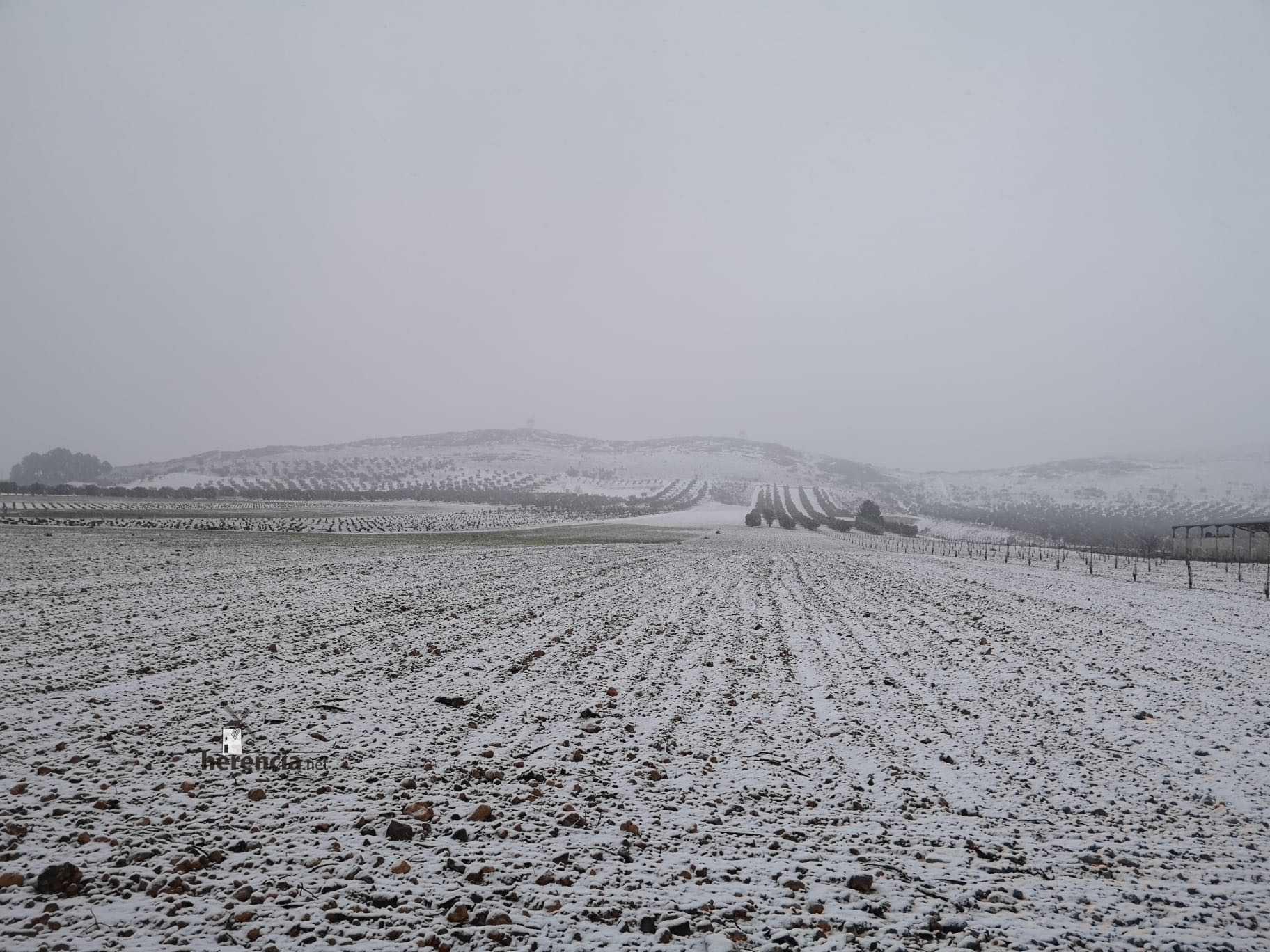 Las nevadas llegan Herencia y a toda Castilla-La Mancha 24