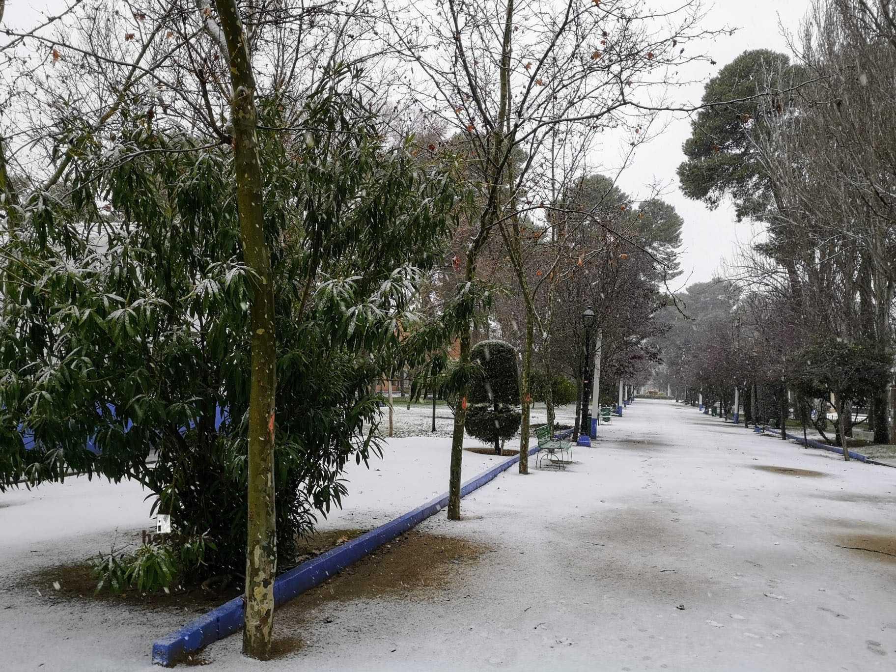 Las nevadas llegan Herencia y a toda Castilla-La Mancha 30