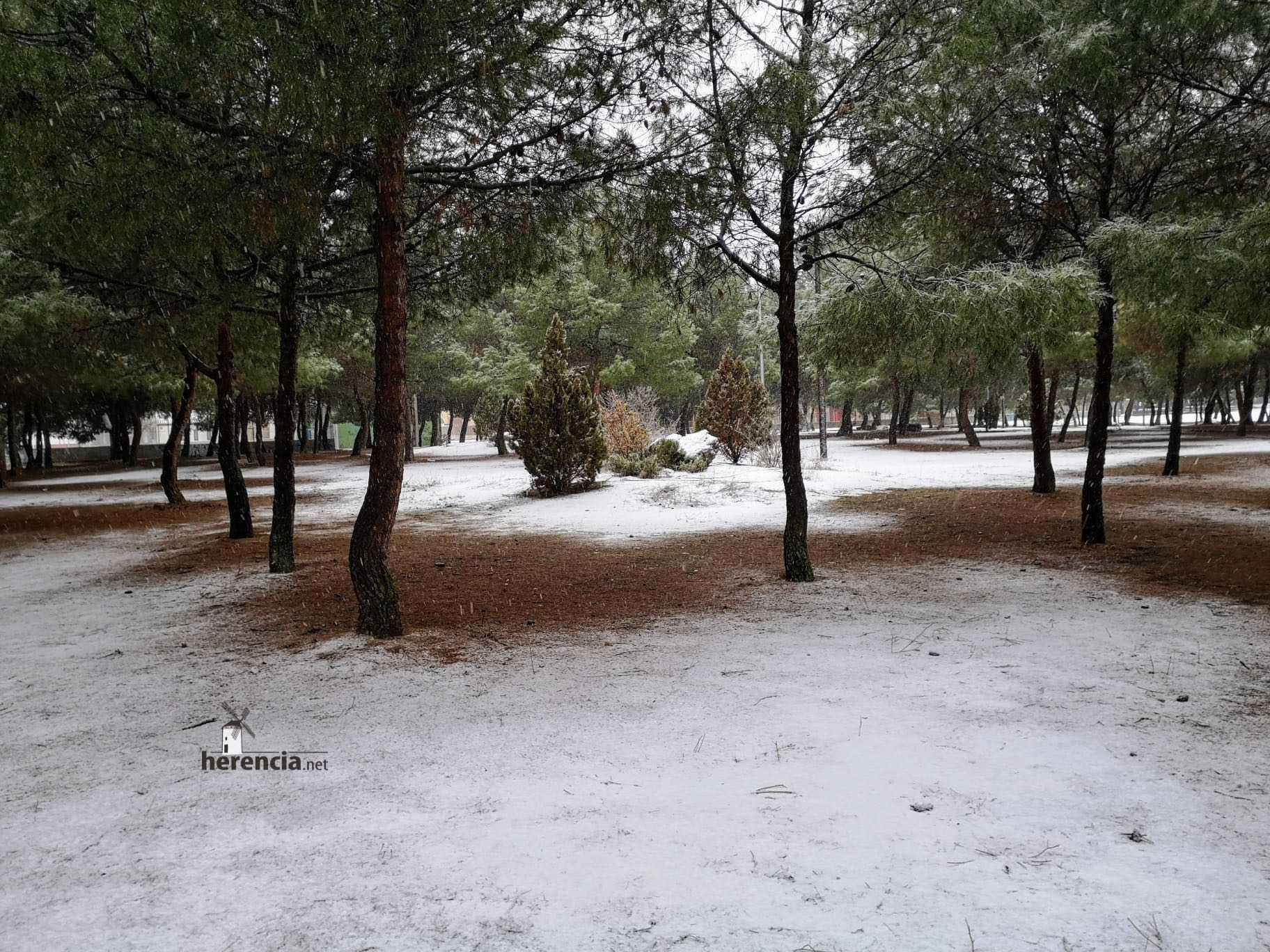 Las nevadas llegan Herencia y a toda Castilla-La Mancha 21