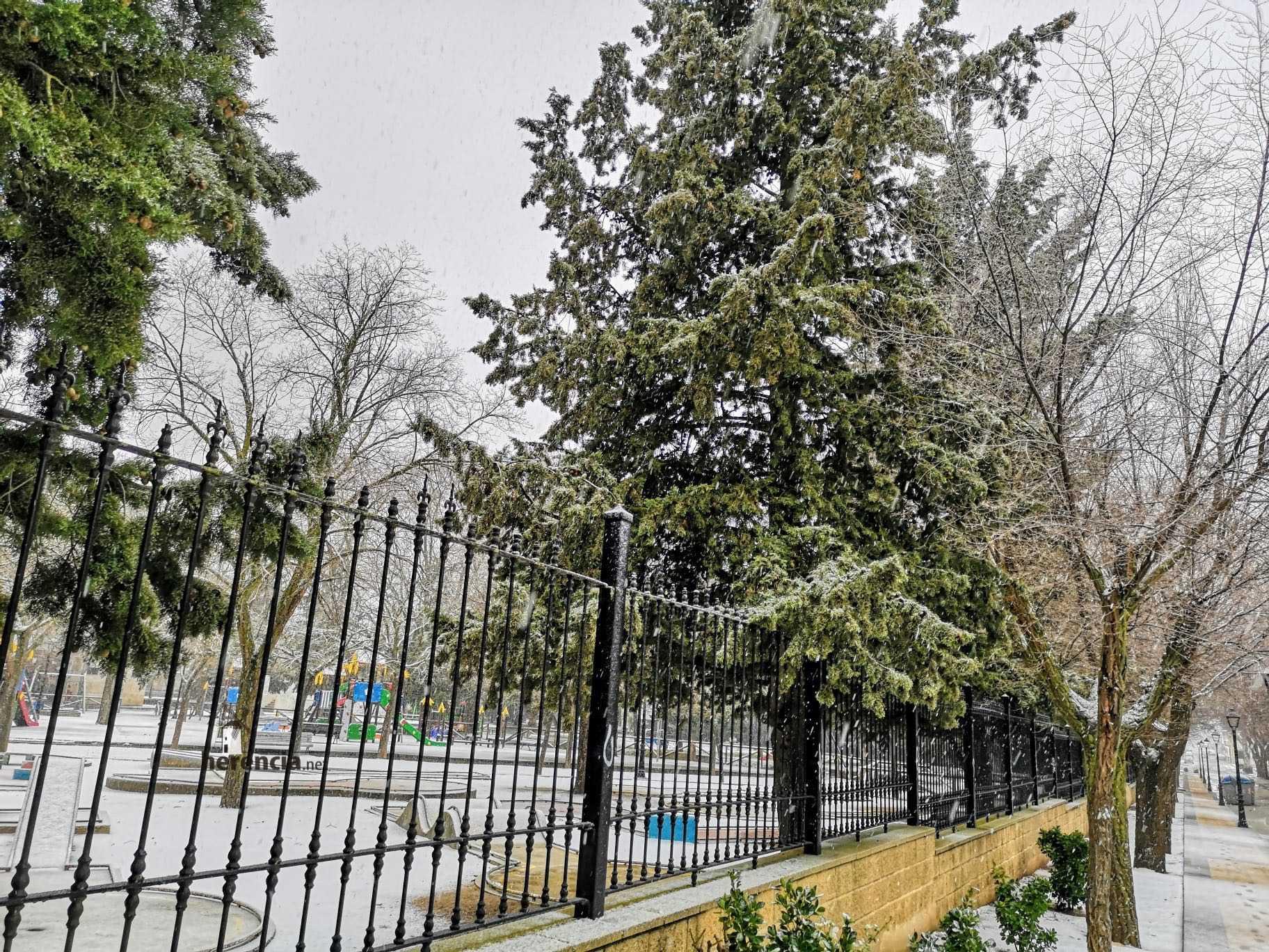 Las nevadas llegan Herencia y a toda Castilla-La Mancha 26