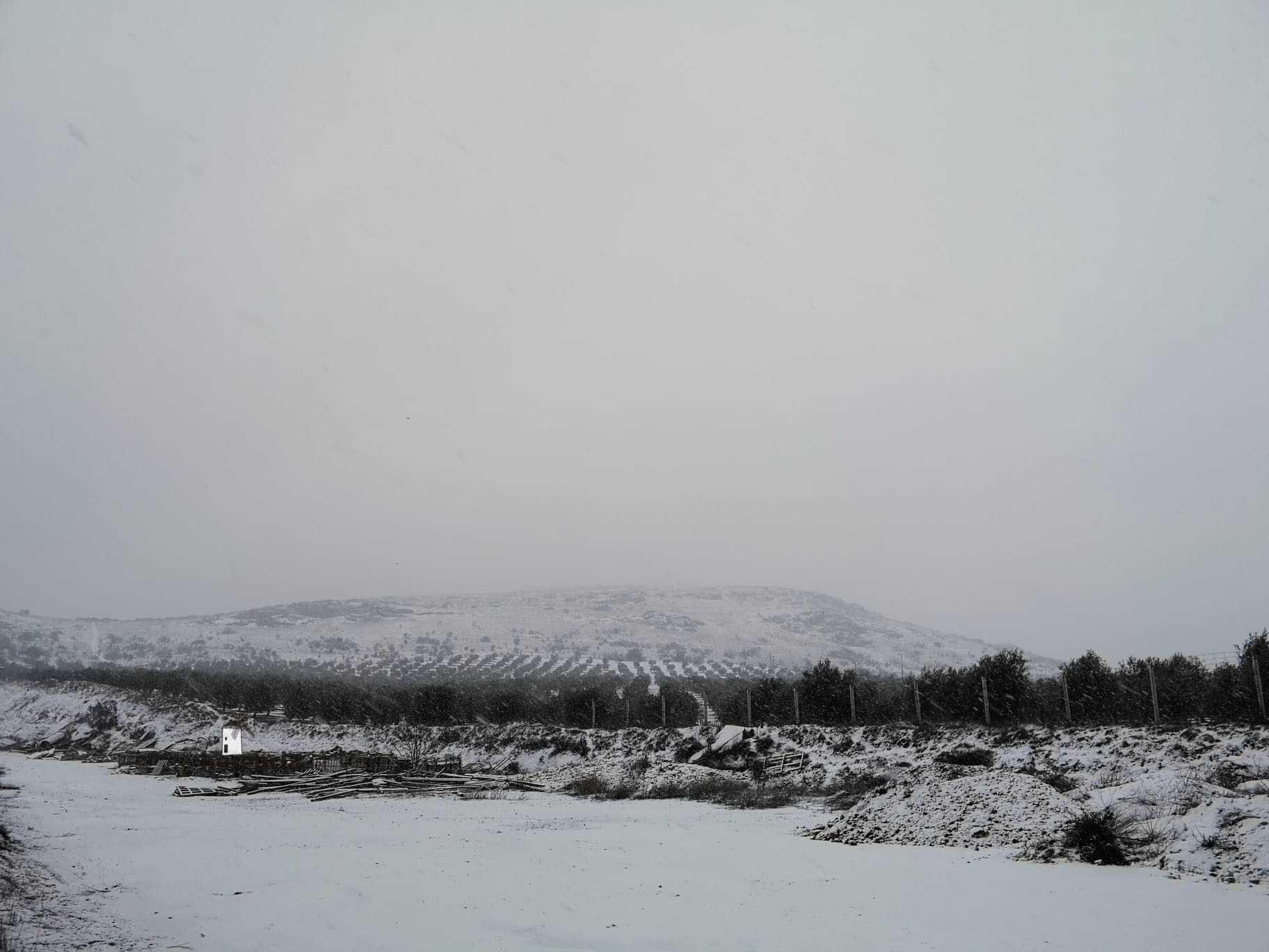 Las nevadas llegan Herencia y a toda Castilla-La Mancha 22