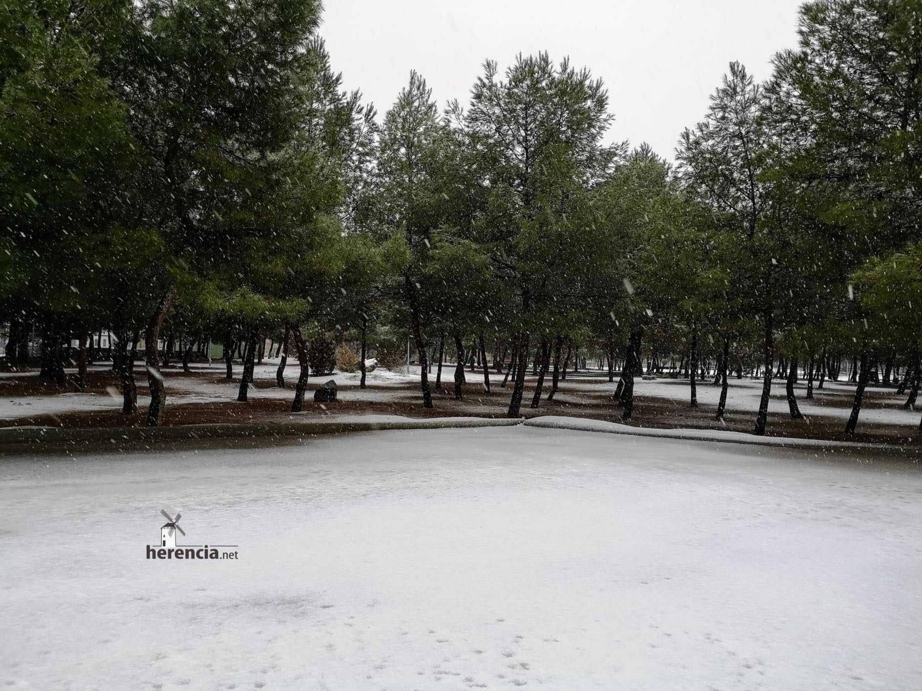 Las nevadas llegan Herencia y a toda Castilla-La Mancha 18