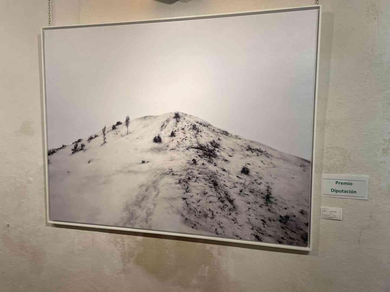 """Inauguración de la exposición del XXXVIII Certamen de Pintura """"Jesús Madero"""" 13"""